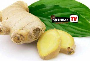 আদা'র যত কার্যকরী গুণ ও উপকারিতা khulna tv